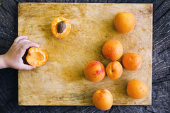 Apricots on a wooden board and a child's hand