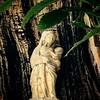 Notre Dame du Creux Dans l'Arbre