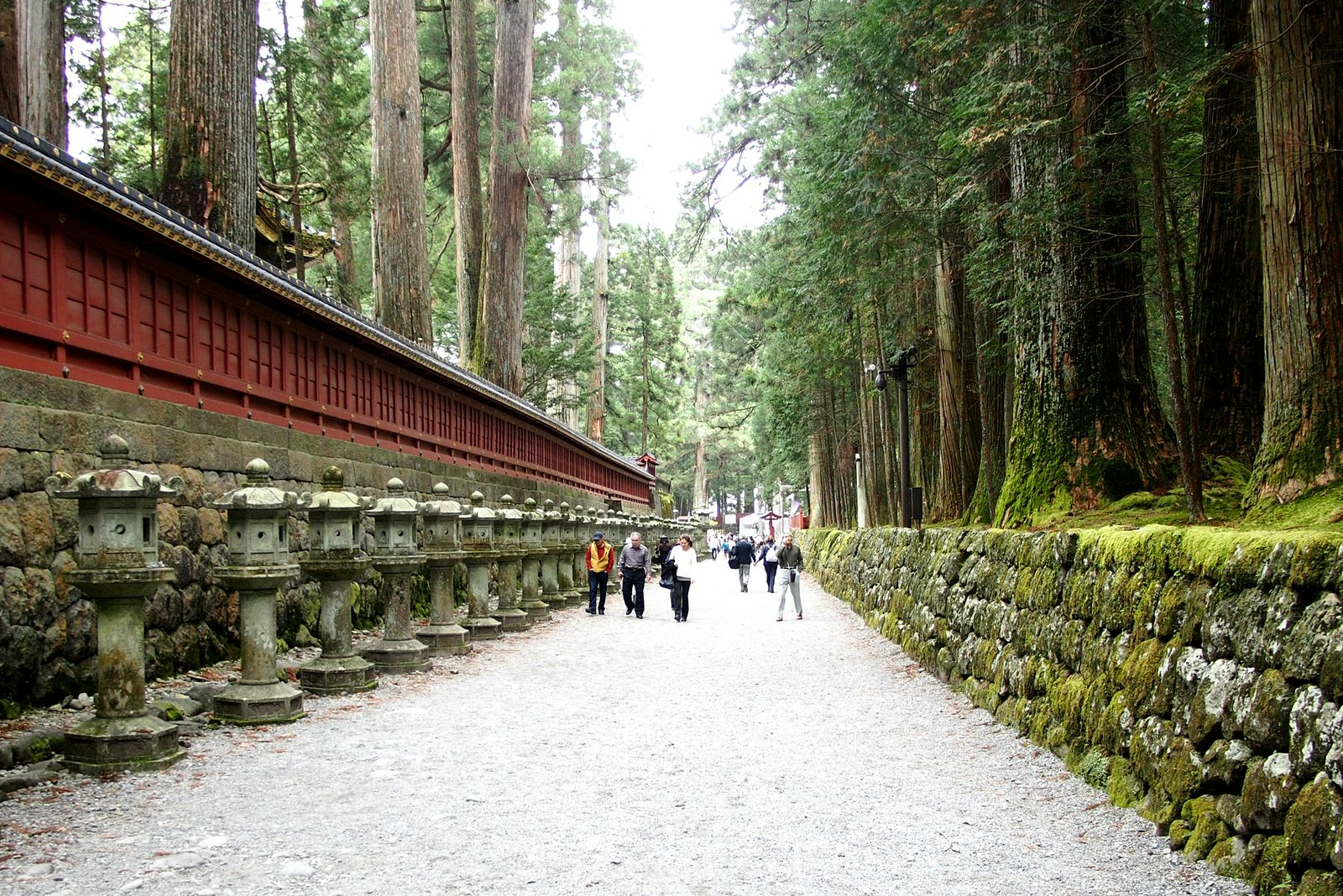 Going through the pine trees, from one temple to another