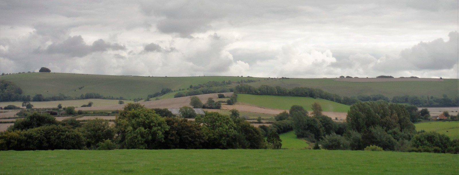 View from Horse Hill to Win Green SWC Walk 251 Tisbury Circular via Ludwell and Berwick St. John