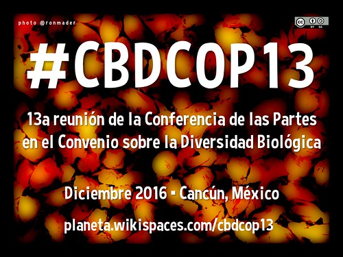 13a reunión de la Conferencia de las Partes en el Convenio sobre la Diversidad Biológica #CBDCOP13 en Cancún, México #openaccess #accesoabierto