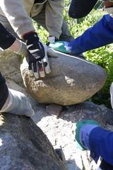 Kivikoolitus