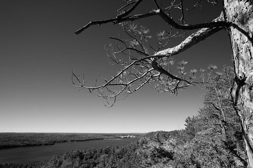 ca autumn sky bw ontario canada tree monochrome beautiful photoshop canon word lens eos focus exposure angle skin quebec hiking alien wide wideangle images x cc adobe f2 manual 12mm m3 manualfocus thousand lightroom 2015 mirrorless rokinon chalkriver atomicenergyofcanada oiseaurock thousandwordimages dustinabbott canoneosm3 dustinabbottnet adobephotoshopcc rokinon12mmf2wideanglemirrorlesslens adobelightroomcc alienskinexposurex