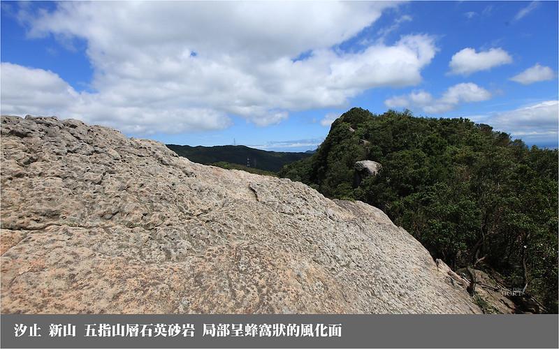 新山_五指山層石英砂岩_局部呈蜂窩狀的風化面