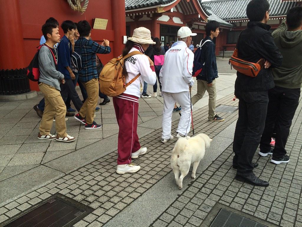 2015 Autumn Japan Trip Day 7: Tokyo