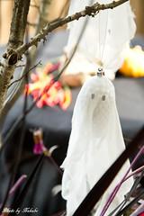 ハロウィン装飾 「かわいい魔女のハロウィンパーティー」