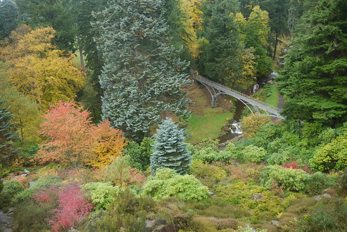View from Cragside House