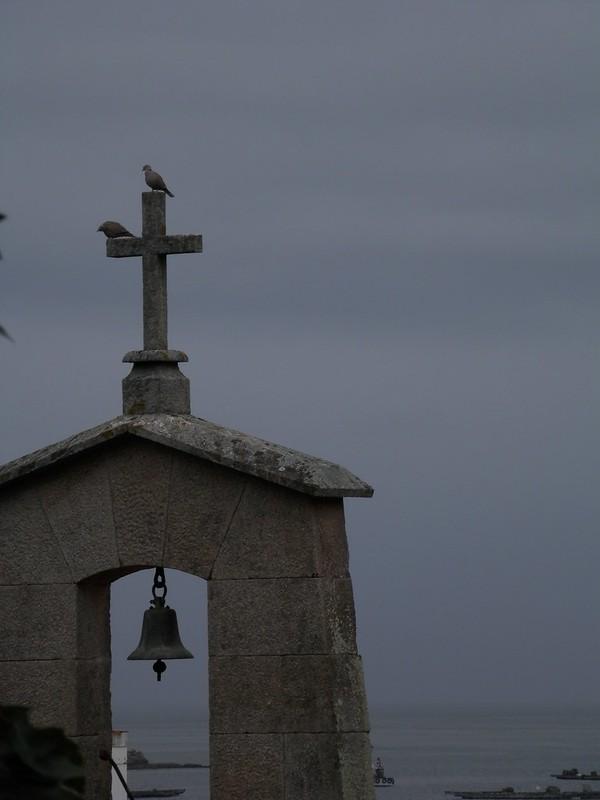 Campanario del mar y palomas