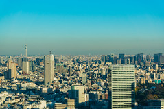 Taking Tokyo Sky Tree from the Tokyo Metropolitan Government Building