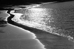Shoreline in Black & White