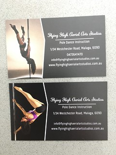 Flying High Business Cards