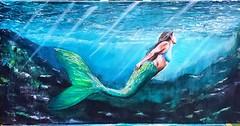 Swim. - - #art #artist #instaart #artoftheday #acrylicpaint #oceanismymuse #ocean_mindedarts #waves #oceanwaves #water #mermaid #mermaidpainting #underthesea #easternallureart