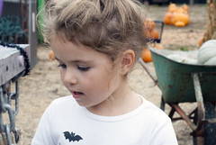 Lena at the Pumpkin Patch 9