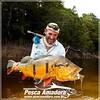 No fly também se pega grandes peixes. Tucunare Açú do Rio Marie-AM  #pescaamadora #pescaesportiva #pesqueesolte #amazonia #riomarie #tucunareaçu #tucunare #fishinglures #fishing #fish peacockbass #peacock #baitcast #flyfishing #fly #amazon #catchandreleas