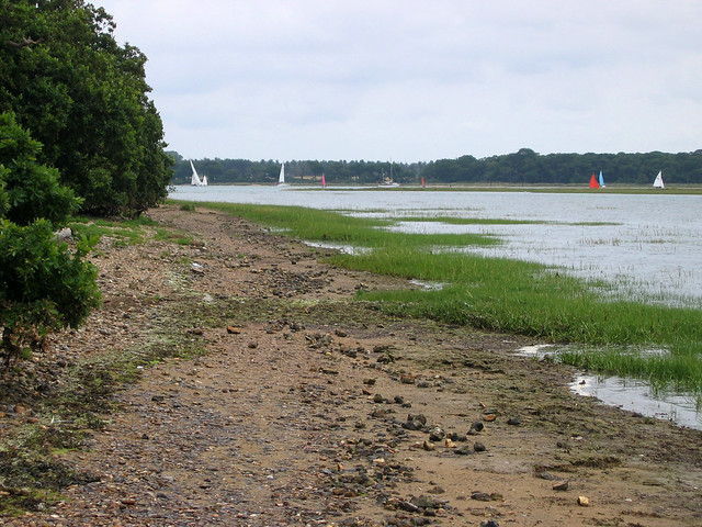 Chichester Harbour near Chidham