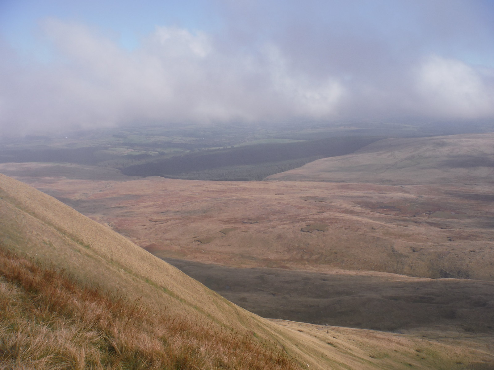 Northerly Views from Fan Hir towards Glasfynydd Forest SWC Walk 86 Fan Brycheiniog and Fan Foel (The Black Mountain)