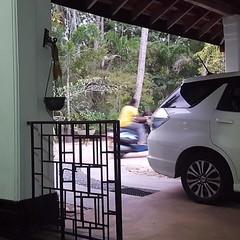 Speed (at Negombo)