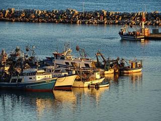 #bejaia #vgaiet #bougie #algerie #algeria #port #harbour #pecherie #fishermen #sunset #coucherdesoleil #soleilcouchant