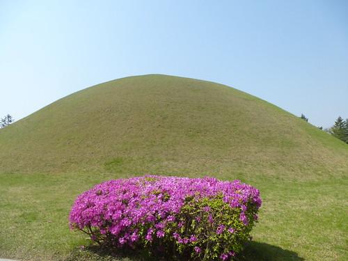 Co-Gyeongju-Parc des Tumuli (2)