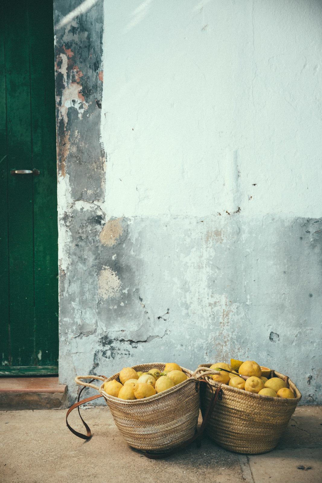 gin-eva-recogida-naranjas-baja-44