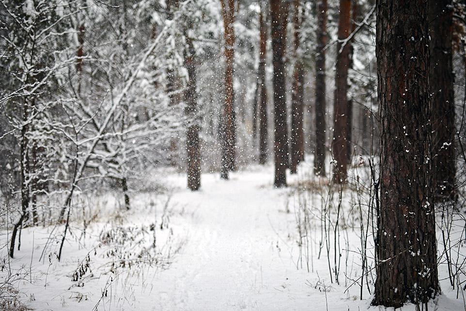 Тёплый снег 2