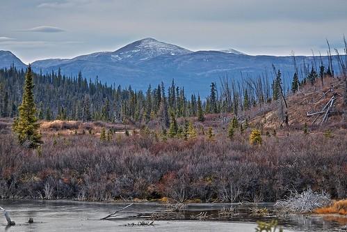 Miner's Range from Fox Lake Burn