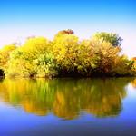 Autumn. Duck Island at Sunny Day
