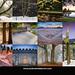 Mount Tabor Park 2016 Calendar Back Cover Andrew Haliburton Photographer by AndrewHaliburton.com