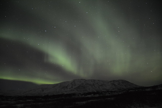 The Aurora Borealis, northern lights, seen from Thingvellir rift valley National Park