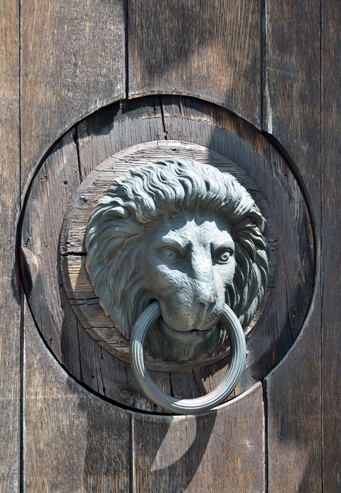 Lion head door knocker at the main entrance of Burg Neulengbach Castle, Lower Austria