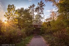 Spring Run Bridge