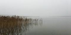 Misty morning at Knudsø