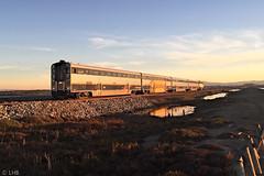 Capitol Corridor train 738