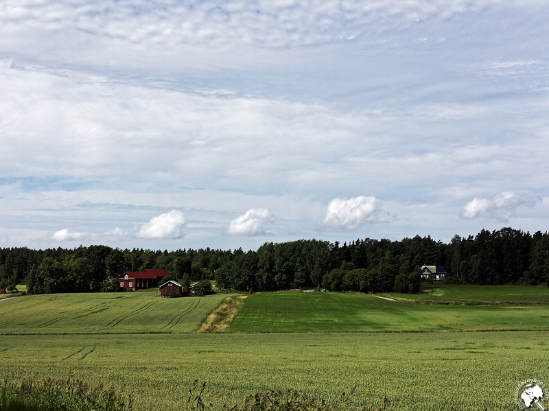 Campagne finlandaise