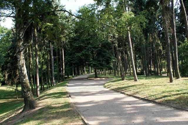 Allées boisées du parc Skaryszewski