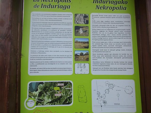 Induriaga (14)