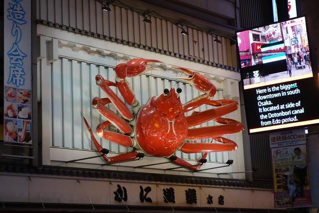 Crab at Dotonbori