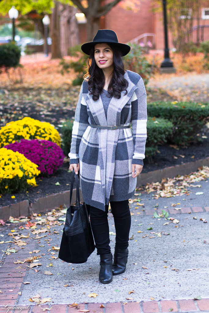 grey plaid coatagain, black pants, wool hat-3.jpg