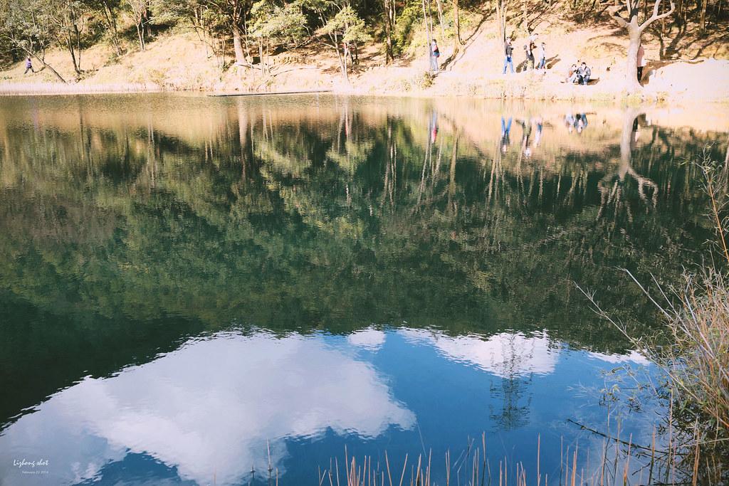 午後的新山夢湖