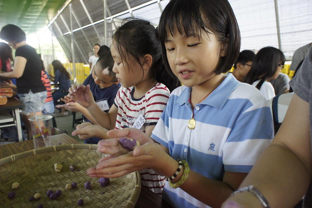 台南市新化區瓜瓜園生態故事館 (34)