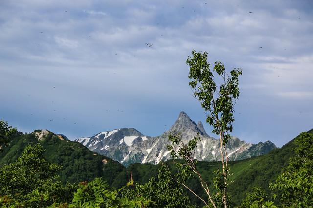 2014-08-02_00270_燕岳.jpg