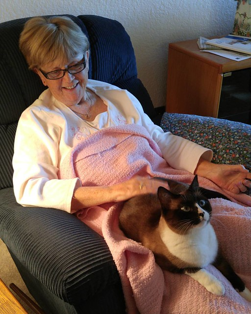 My mother-in-law and cat-in-law.