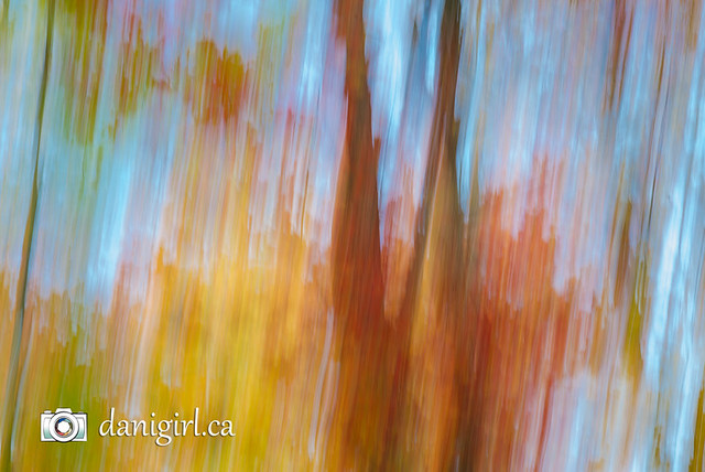 autumn abstracts-3