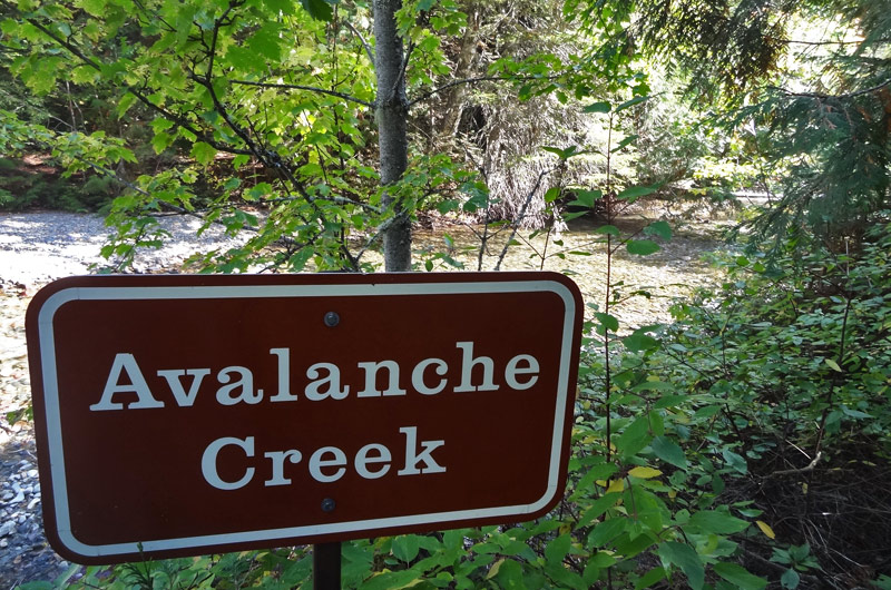 avalanche-creek