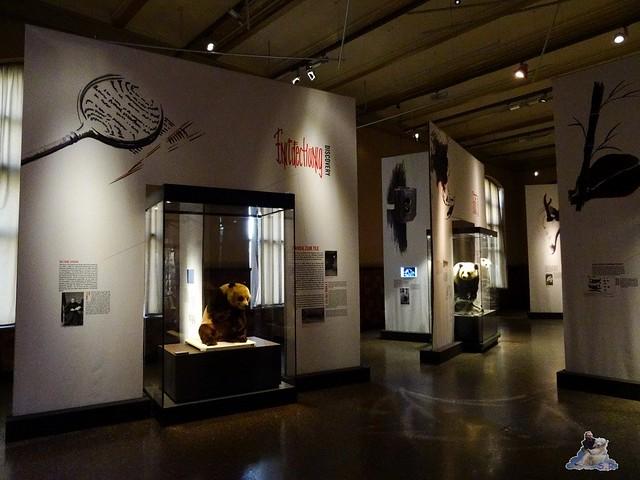 Naturkunde Museum Berlin 17.07.2015  0114