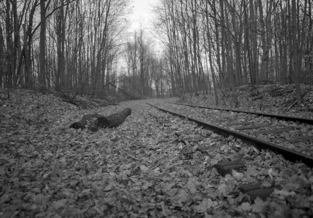 Old Rail Road Track in Milton