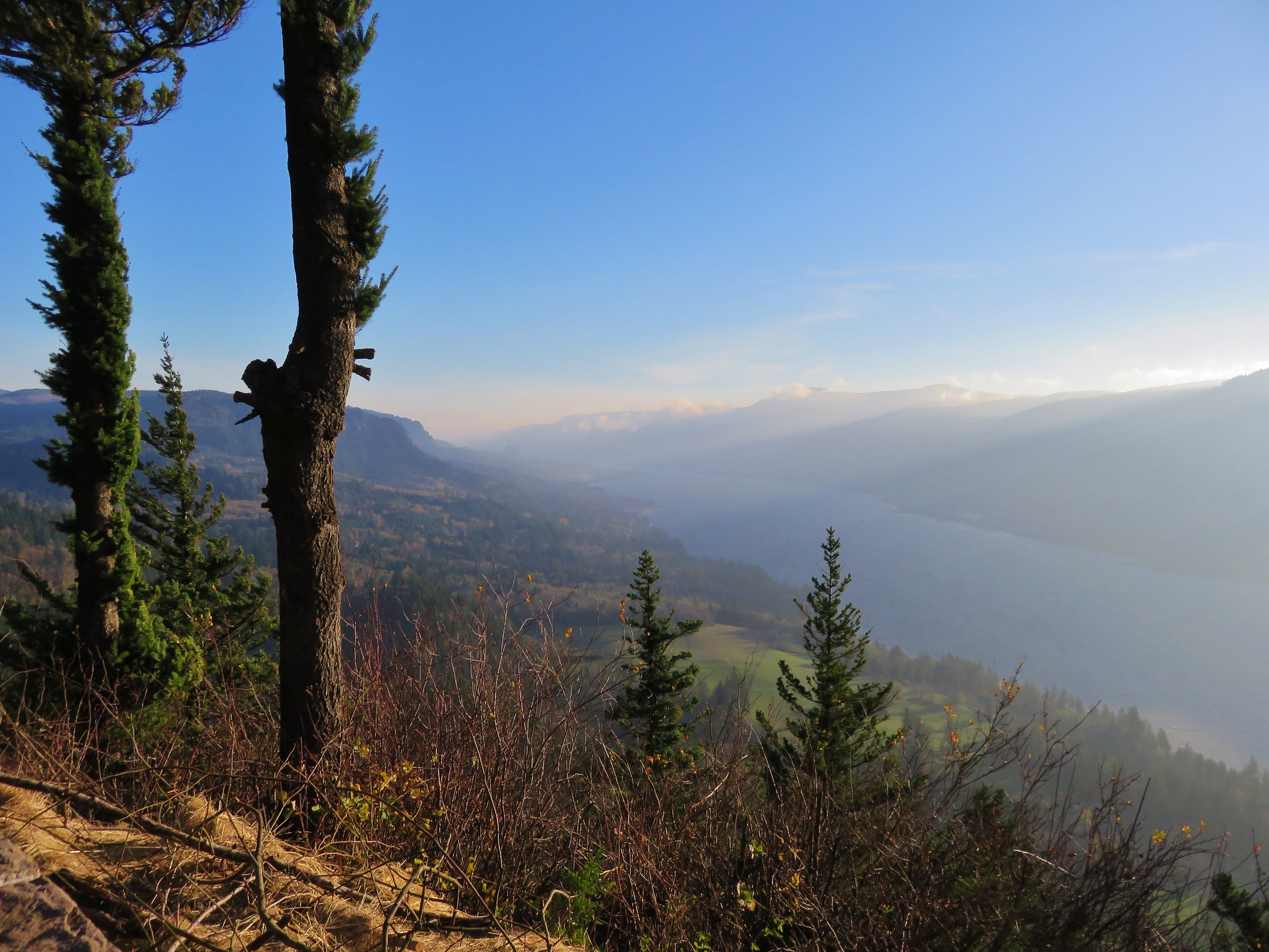 Columbia River from the Cape Horn Trail