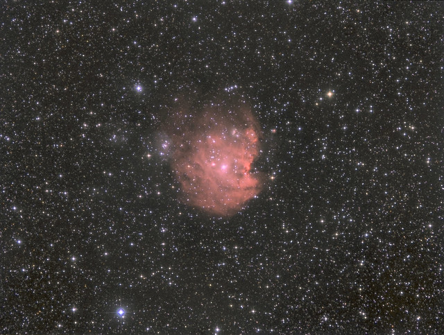 Monkey Head Nebula NGC2174