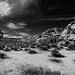 Hidden Valley Joshua Tree National Park by Kent Freeman (Off Line)