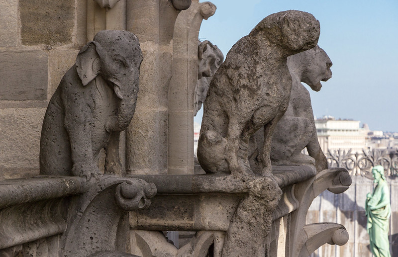 Galerie des chimeres. Notre-Dame de Paris